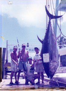 bluefin-tuna-scan